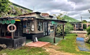 Protea Ridge Lounge