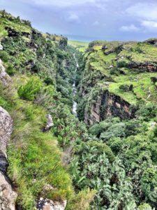 Hiking and Trail Running Protea Ridge