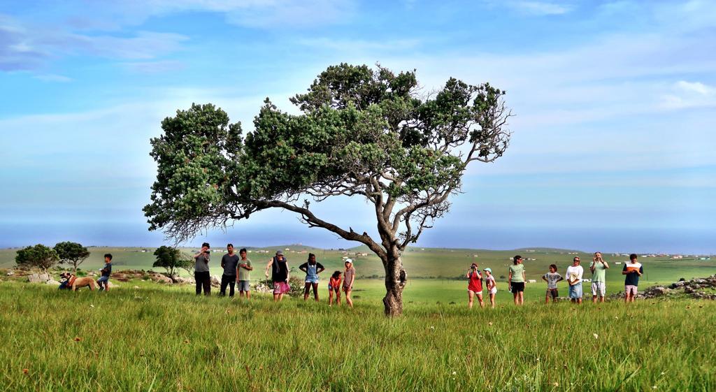 Protea Ridge Hiking