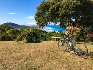 Protea Ridge Mountain Biking