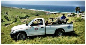 Protea Ridge Fishing