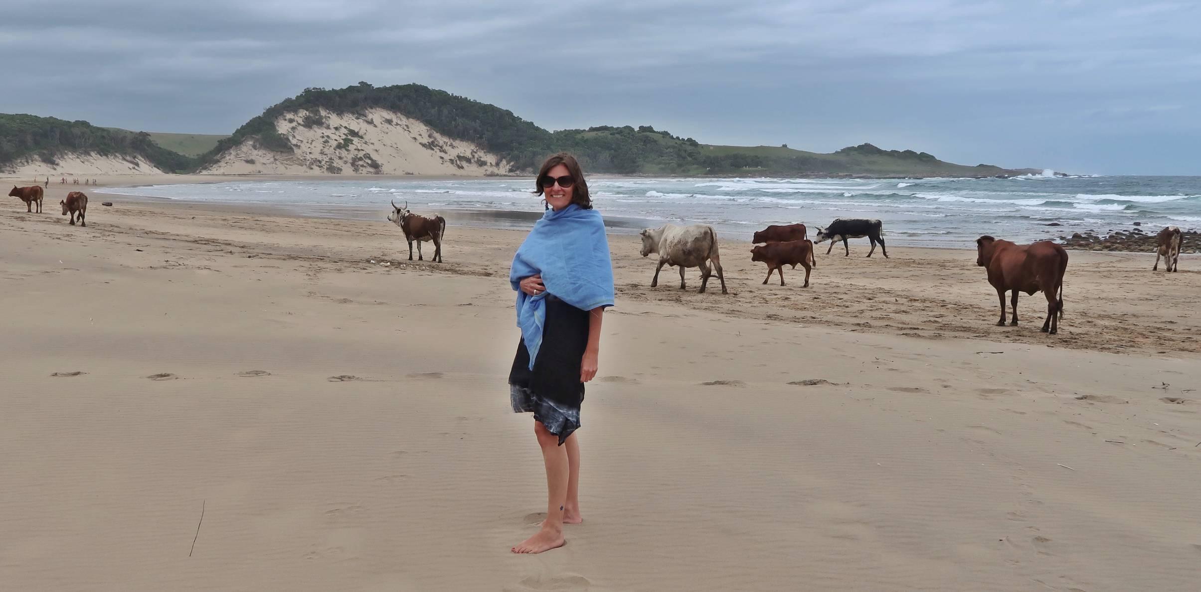 wild coast south africa accommodation protea ridge