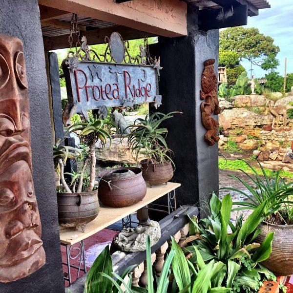 wild coast accommodation protea ridge